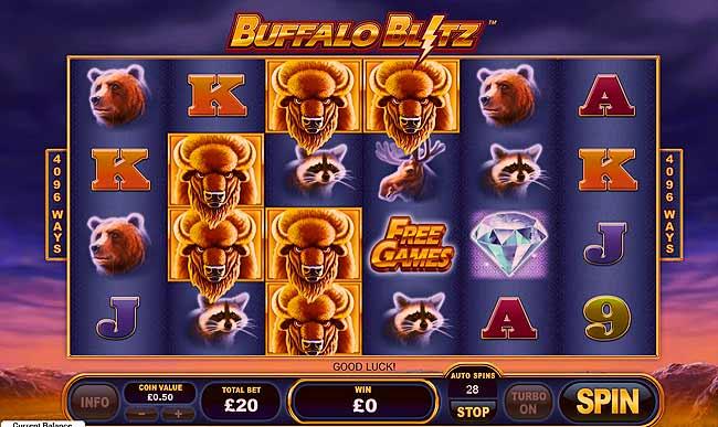 Buffalo Blitz Review